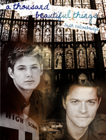 A thousand beautiful things (Destiel fic fanart) by mistofstars