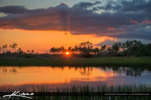 Pine-Glades-Natural-Area-Sunset by CaptainKimo