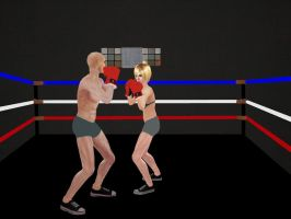 Intergender Boxing 01 by andypedro