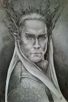 Mighty king Thranduil by Spring-Fairy