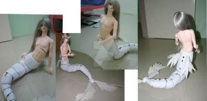 WIP bjd dragon tail 2 by chocobikies