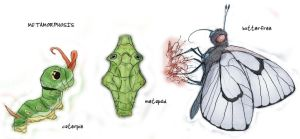 010 Caterpie, 011 Metapod, 012 Butterfree by RtRadke