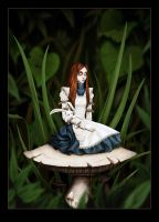 Alice's Wonderland by SBGothik
