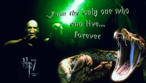 Voldemort by jmpotter