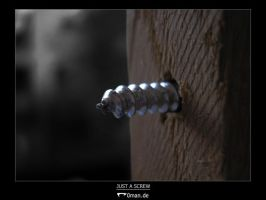 Just a screw by r0man-de