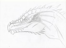 another dragon head by paskiman