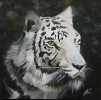 Illias the White Tiger by devilablack