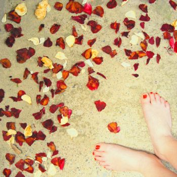 To step on rose leaves by gergelul