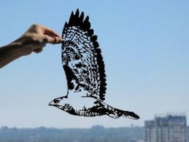 Hawk In Flight Handmade Original Papercut by DreamPapercut