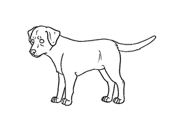 FREE Labrador retriever lineart PAINT by Kultapossu
