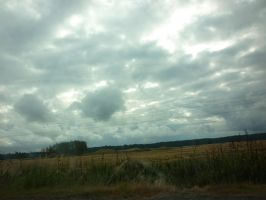 Cloudy background by Camalla