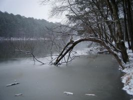 Icy Shallows by Charlotte-Nikki