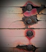 Rusted rivets on a abandoned trailer by PAlisauskas