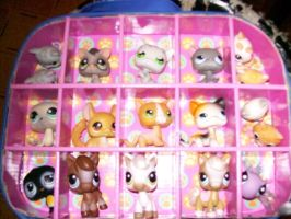 Littlest Pet Shop Pets by Brightshadows101