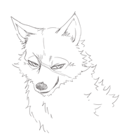 [Doodle] Wolf Headshot by CrisisAlter