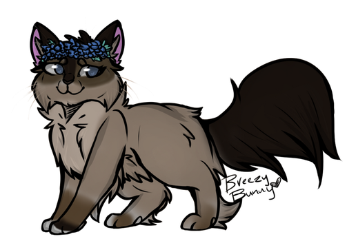 Siamese adopt CLOSED by bigcats4life