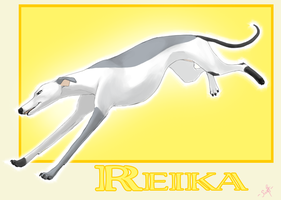 Rabbi Trade: Reika by swift-whippet