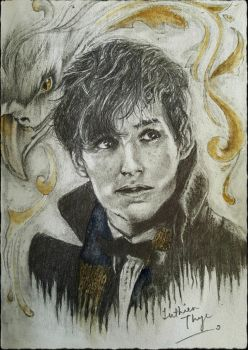 Eddie Redmayne as Newt Scamander by LuthienThye