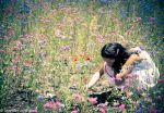 Field of flowers by RuckMonkeyPhotos