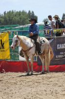 Taupo Rodeo 221 by Sooty-Bunnie