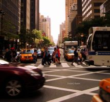 New York City XVI by DanielJButler
