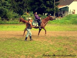 Horse riding training by Fabulous-Shannen