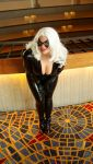 Black Cat 25 by TimeLordmk