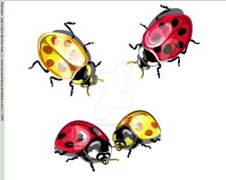 Vector Ladybugs by Kassworkshop