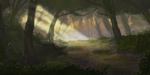 Forest at Dawn by JKRoots