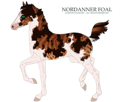 Nordanner Foal #5458 by soulswitch