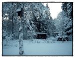 Swedish Winter by hannayoung