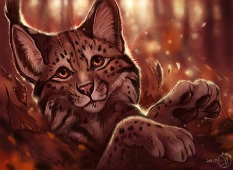 Autumn lynx by FlashW