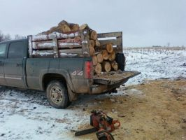 load of firewood by bleedingpyre