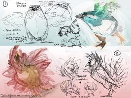 Bird concepts by BearlyFeline