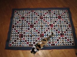 Mr Quilty's Quilt by MrsQuilty