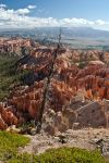 Bryce Canyon 4 by AaronPlotkinPhoto