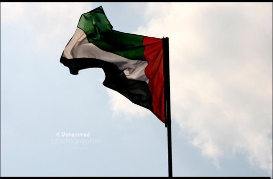 fdiat UAE by BinT-Al3rab-2009