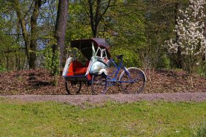 trishaw by expression-stock
