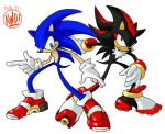 Sonic and Shadow by AndrewDickman