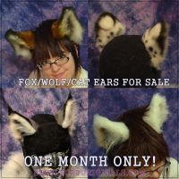 Fox and Kitty Ears for Sale by Beetlecat