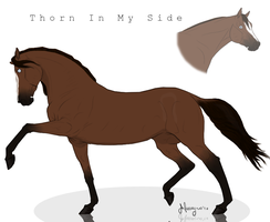 SMS Thorn in My Side by artisinmyheart101