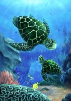 Chelonia mydas (Green Sea Turtle) by KaceyMeg