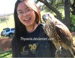 Falconry ID by Thysania