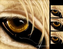 Wir's Eye - Icon by soulspoison