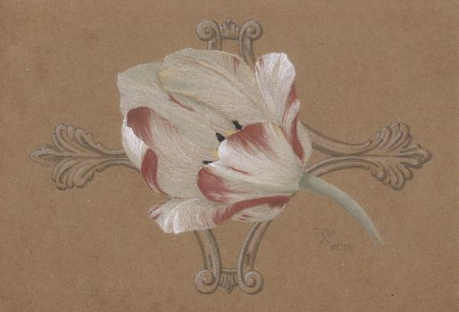 The Tulip by Barbaroid