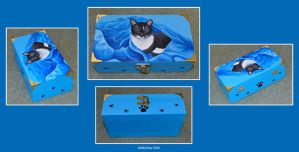 Cat Wooden Box by wolfysilver