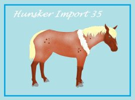 Hunsker Import #35 | Free to Claim | OPEN by shekeira