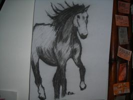 Charcoal Horse by DarthJader11