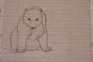 Praticing In Polar Bears by NordLyset