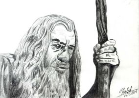 Gandalf The Grey by Ralphmax